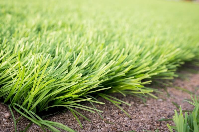Frequently Asked Questios About Artificial Grass