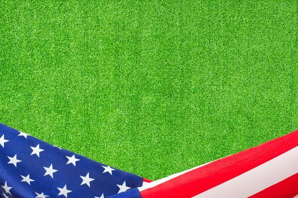 Wholesale Artificial Grass in United States